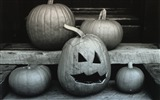 Title:Halloween marker - Pumpkin Wallpaper Views:8663
