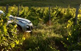 Title:Mazda CX-7 - 2010 models SUV Wallpaper first series 10 Views:4907