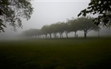 Title:Meadows Park in thick fog scotland Views:6241