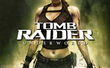 Title:Tomb Raider 8 Underworld wallpaper Views:6654