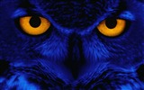 Title:Weird owl wallpaper Views:37273