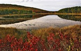 Title:6 Maine-Acadia National Park Wallpaper Views:6083