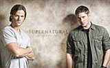 Title:American TV-Supernatural wallpaper Views:21670