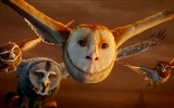 Title:Legend of the Guardians-The Owls of GaHoole movie wallpaper 02 Views:4673
