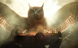 Title:Legend of the Guardians-The Owls of GaHoole movie wallpaper 05 Views:5295