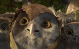 Title:Legend of the Guardians-The Owls of GaHoole movie wallpaper 09 Views:4939