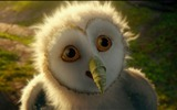 Title:Legend of the Guardians-The Owls of GaHoole movie wallpaper 14 Views:4992