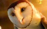 Title:Legend of the Guardians-The Owls of GaHoole movie wallpaper Views:8753