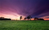 Title:New Zealand-Beautiful Morning Sunrise at Cornwall Park-Auckland Views:6836