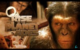 Title:Rise of the Planet of the Apes movie wallpaper 12 Views:6692