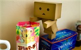 Title:danbo wallpapers-Second Series 04 Views:7666