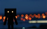 Title:danbo wallpapers-Second Series 06 Views:10309