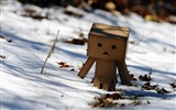 Title:danbo wallpapers-Second Series 11 Views:10601