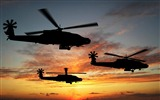 Title:Apache Helicopters-military aircraft-HD Wallpaper Views:18694