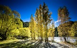 Title:Autumn in New Zealand-Amazing nature Views:5681