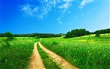 Title:Green Scenery-landscape wallpaper selection Views:41602