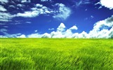 Title:Under the blue sky Grassland-Amazing nature Views:63206