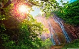 Title:Forest Waterfall-World most famous waterfall landscape wallpaper Views:8763