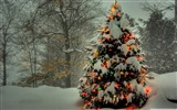 Title:christmas tree outside-Christmas items - jewelry Desktop Wallpaper Views:36195