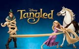 Title:Disney film-Tangled 2010 animated wallpaper Views:10986