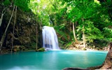 Title:tropical waterfall-World most famous waterfall landscape wallpaper Views:35442