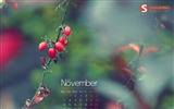 Title:Autumn Impression-November 2011-Calendar Desktop Wallpaper Views:8202