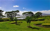 Title:Park landscape-Nature Desktop Wallpaper Views:5929