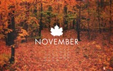 Title:The Hush-November 2011-Calendar Desktop Wallpaper Views:4240