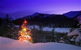 Title:christmas tree with lights outdoors in the mountains-Christmas Desktop Pictures Views:5004