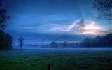 Title:early morning mist-Nature Desktop Wallpaper Views:5220