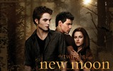 Title:Amazing new moon-The Twilight Saga-Series HD movie wallpaper Views:4697