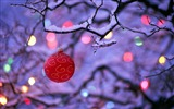 Title:Shuya red Christmas balls wallpaper on Views:5257