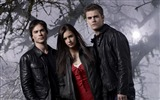 Title:The Vampire Diaries HD movie wallpapers 01 Views:5410