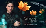 Title:The Vampire Diaries HD movie wallpapers 07 Views:7366