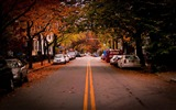 Title:american town autumn-the city landscape photography wallpaper Views:17325