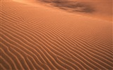 Title:desert sand-Amazing desert scenery Desktop Wallpapers Views:11043