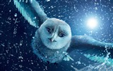 Title:legend of the guardians the owls-Cartoon animation film Selected Wallpaper Views:16273