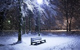 Title:lone bench covered in snow-winter theme desktop wallpaper Views:5945