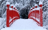 Title:red japanese bridge winter-winter theme desktop wallpaper Views:8274