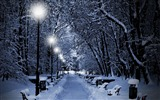 Title:snowy park at night-winter theme desktop wallpaper Views:58847