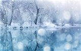 Title:Like the romantic snow-the cold winter landscape Desktop Views:21169
