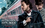 Title:Sherlock Holmes A Game of Shadows Movie Wallpaper 11 Views:3540