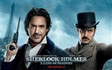 Title:Sherlock Holmes A Game of Shadows Movie Wallpaper Views:5735