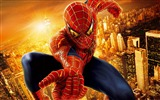 Title:The Amazing Spider Man 2012 HD Movie Wallpaper Views:11614