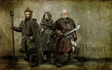 Title:The Hobbit An Unexpected Journey Movie Wallpaper 10 Views:4243