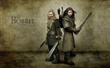 Title:The Hobbit An Unexpected Journey Movie Wallpaper 11 Views:17556