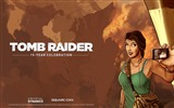 Title:Tomb Raider 15-Year Celebration Game HD Wallpaper 02 Views:3493