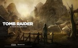 Title:Tomb Raider 15-Year Celebration Game HD Wallpaper 04 Views:4188