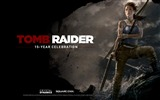 Title:Tomb Raider 15-Year Celebration Game HD Wallpaper 06 Views:4002