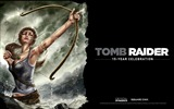 Title:Tomb Raider 15-Year Celebration Game HD Wallpaper 08 Views:4269